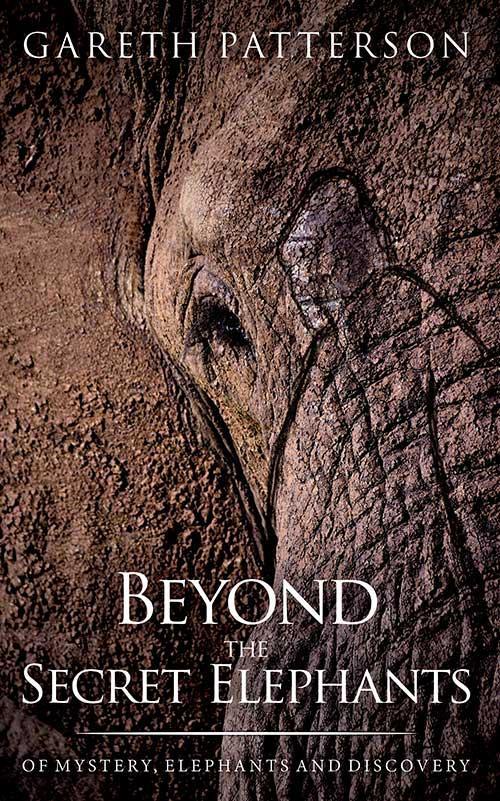 BEYOND THE SECRET ELEPHANTS